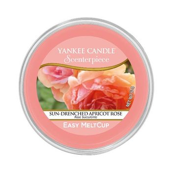 Scenterpiece vosk Sun-Drenched Apricot Rose